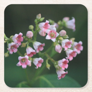 Tiny Pink Wildflowers Square Paper Coaster