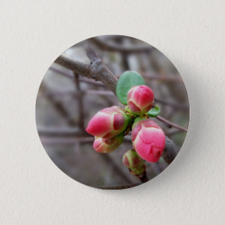 tiny red buds 2 inch round button