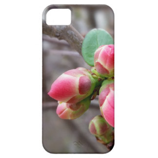 tiny red buds iPhone 5 cover