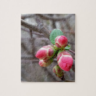 tiny red buds jigsaw puzzle