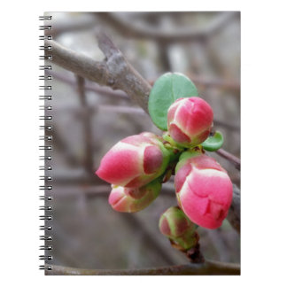 tiny red buds notebook