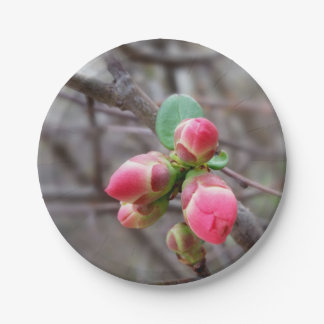 tiny red buds paper plate