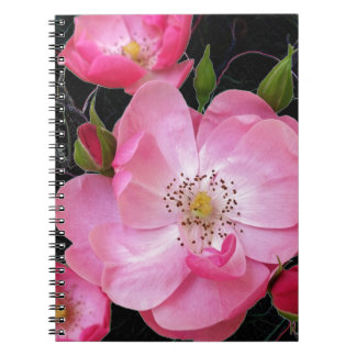 tiny rosebud opens spiral notebook