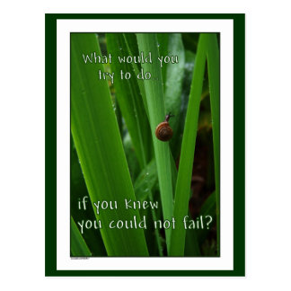 """Tiny Snail """"If you could not fail"""" Postcard"""