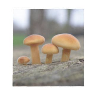Tiny Toadstools Macro Notepad