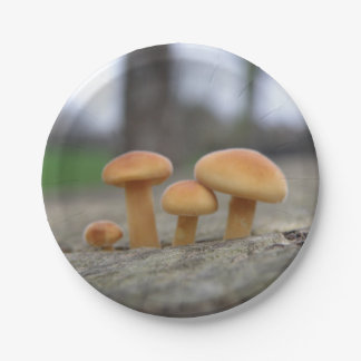 Tiny Toadstools Macro Paper Party Plates 7 Inch Paper Plate