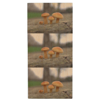 Tiny Toadstools Macro USB Drive Wood USB 2.0 Flash Drive