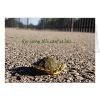 tiny turtle belated birthday card