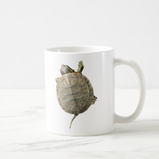 Tiny Turtle Crawling Up Side of Mug