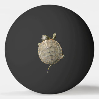 Tiny Turtle on Black Ping-Pong Ball