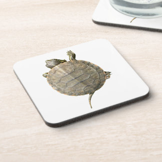Tiny Turtle (Tortoise) Coaster