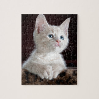 Tiny White Kitten Jigsaw Puzzle