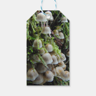 Tiny White Mushrooms Gift Tags