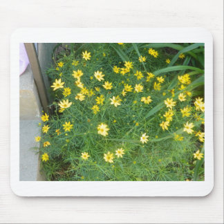 Tiny yellow flowers with greenery mouse pad