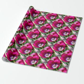 Tiptoe Through Wrapping Paper