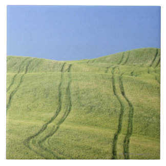 Tire Tracks in Wheat Field, Val d'Orcia, Siena Tile