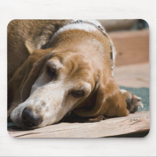 tired basset hound mouse pad