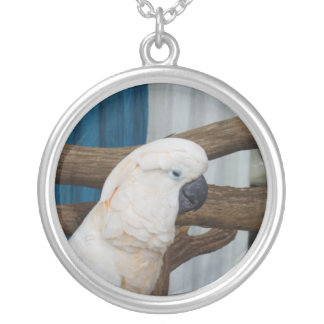 Tired Cockatoo Silver Plated Necklace