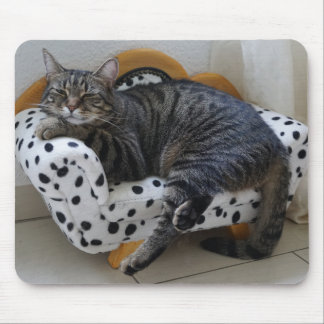 Tired kitty mouse pad