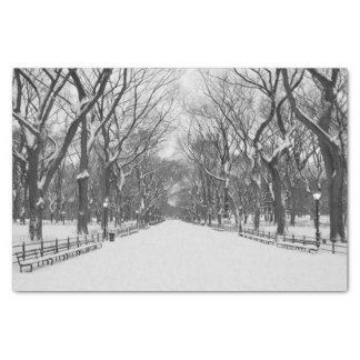 Tissue Paper -  Central Park in Winter, New York