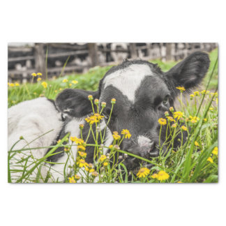 Tissue Paper with Image of Calf in Flowers