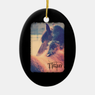 Titan Deluxe Edition Ornament