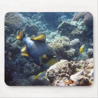 Titan Triggerfish Mousepad