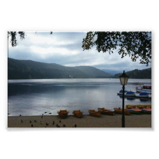 Titisee Lake Germany Poster Photographic Print