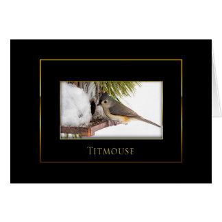 Titmouse -  Bird Collection - Black/Gold Card