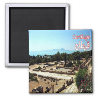 TN - Tunisia - Carthage - Ruins Magnet