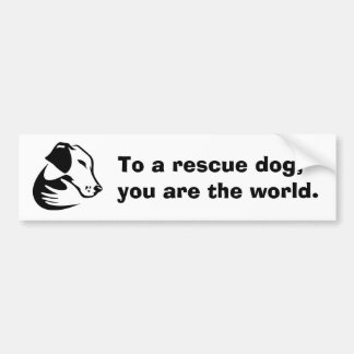 To a rescue dog, you are the world. bumper sticker