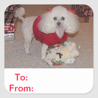 To and From Gift Tag Poodle Sticker