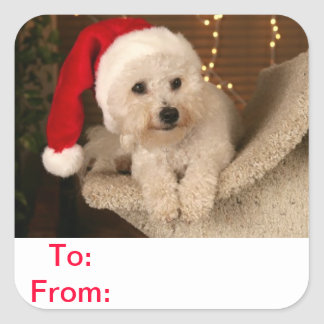To and From Gift Tags Bichon Frise Dog Sticker
