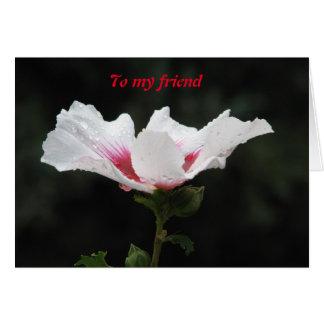 To my friend card