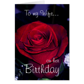 To my Wife on her Birthday-Red Rose Romantic Card