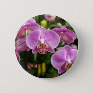 to orchid_fresh_flower 2 inch round button