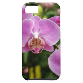 to orchid_fresh_flower case for the iPhone 5