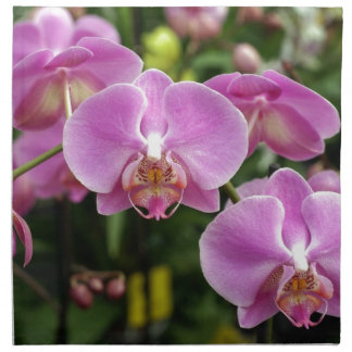 to orchid_fresh_flower napkin
