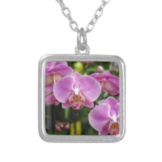 to orchid_fresh_flower silver plated necklace