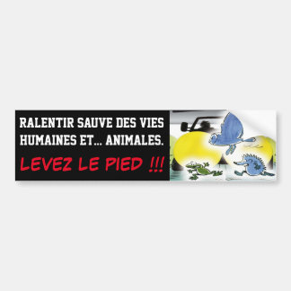 TO SLOW DOWN SAVES HUMAN LIVES AND ANIMAL BUMPER STICKER