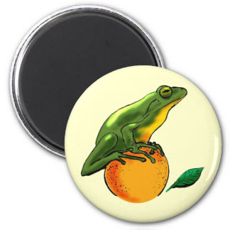 Toad and Orange Magnet