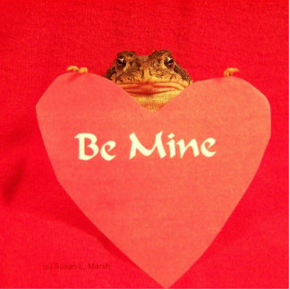 Toad frog holding a heart that says Be Mine ? Photo Cutout