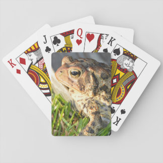 Toad Playing Cards