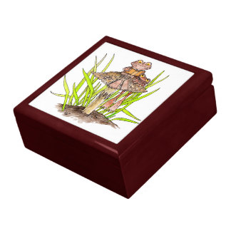 Toads Sharing A Book Gift Box