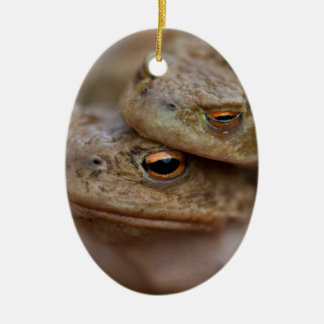 "Toads ""The Ugly Couple"" Ornament"