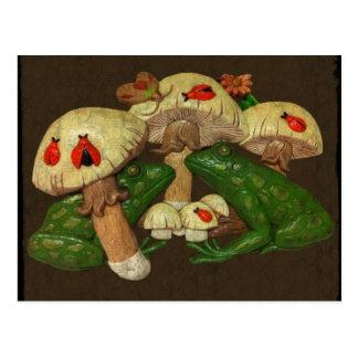 Toads & Toadstools Postcard