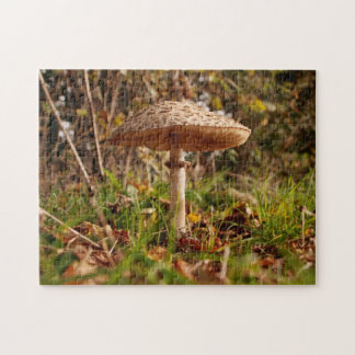 Toadstool jigsaw puzzle