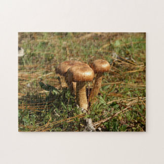 Toadstool, Photo Puzzle. Jigsaw Puzzle
