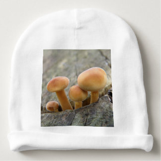 Toadstools on a Tree Trunk Baby Beanie Hat