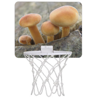Toadstools on a Tree Trunk Basketball Hoop